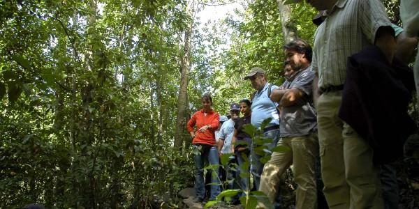slider-jornadas-forestales-5