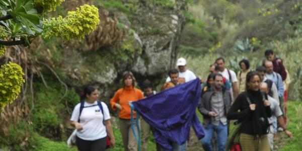 XII Jornadas Forestales (8)