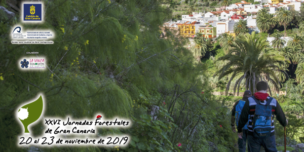 portada_programa_xxvi_jornadas_forestales_1
